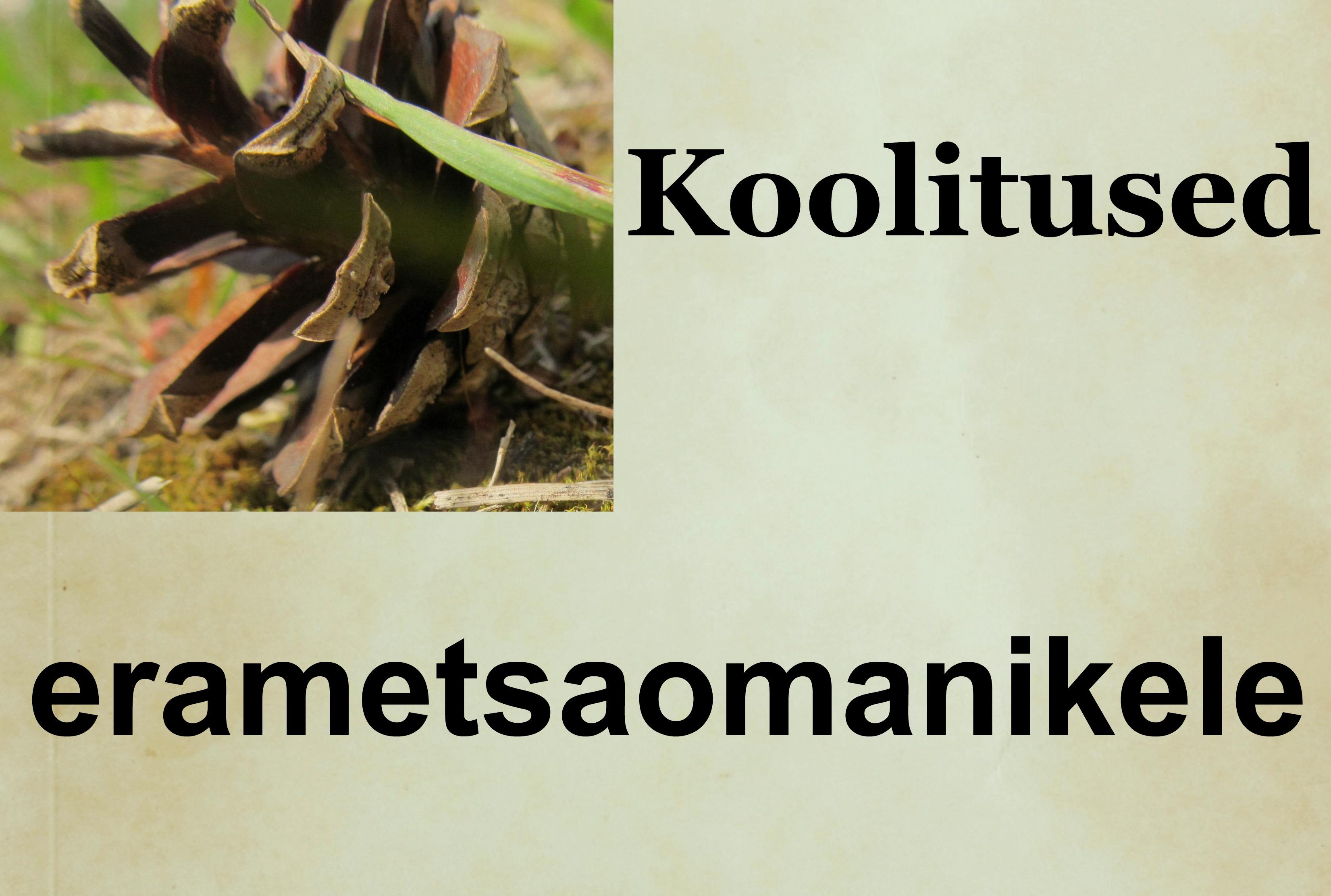 http://vana.erametsaliit.ee/koolituste-info/